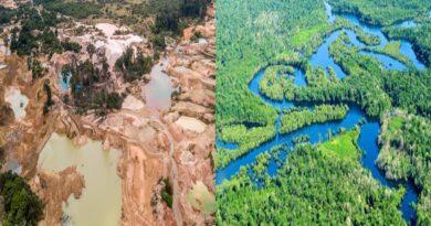 Un grito global en defensa de la Amazonía